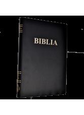 Biblia - coperta vinil