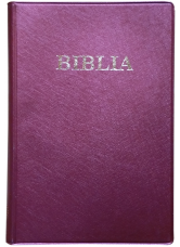 Biblie mijlocie simpla de culoare visinie, coperti de plastic, ştanţat BIBLIA.