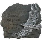 Aplică - PUTERE ,, Domnul mă poartă pe aripi de vultur.''