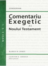 Comentariu exegetic al Noului Testament. 1, 2, 3 Ioan - Karen H. Jobes