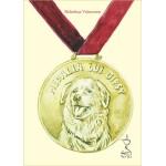 Medalia lui Gipsy - Brandusa Vranceanu