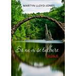 Să nu vi se tulbure inima - D. Martyn Lloyd-Jones