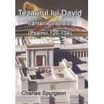 Tezaurul lui David. Cântările treptelor (Psalmii 120-134) - C. H. Spurgeon