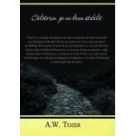 Calatorim pe un drum stabilit - A.W.Tozer