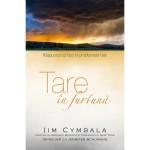 Tare in furtuna - Raspunsul lui Isus la problemele tale - Jim Cymbala
