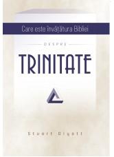 Care este invatatura Bibliei despre Trinitate - Stuart Olyott